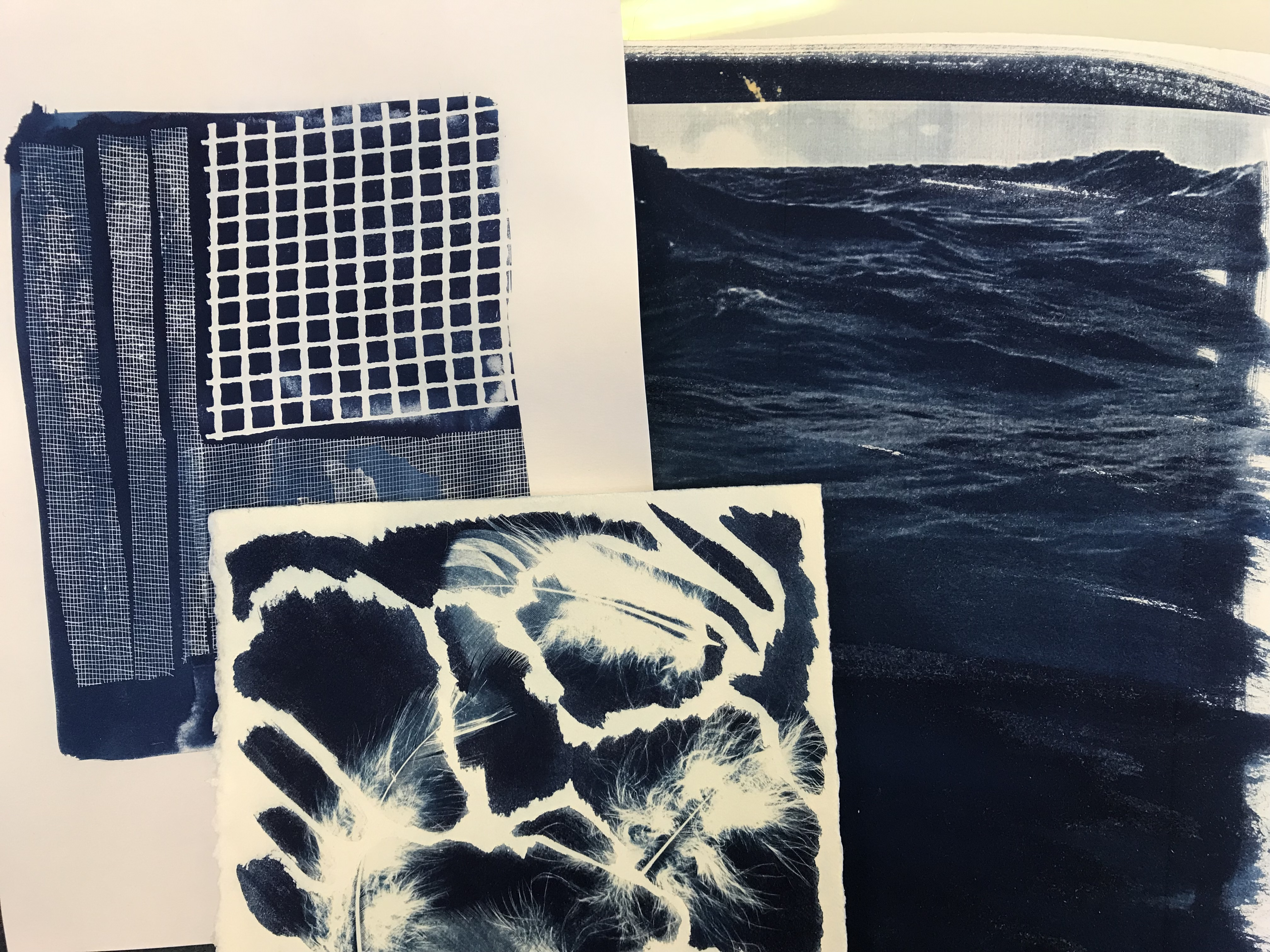 Cyanotype Afternoon